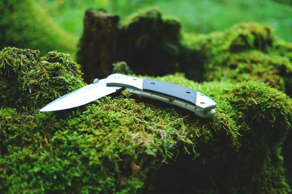 Camping and bushcraft basics: the camping knife Guides